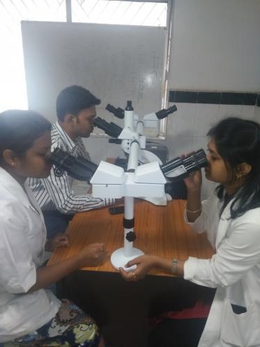 Research Penta Head Microscope